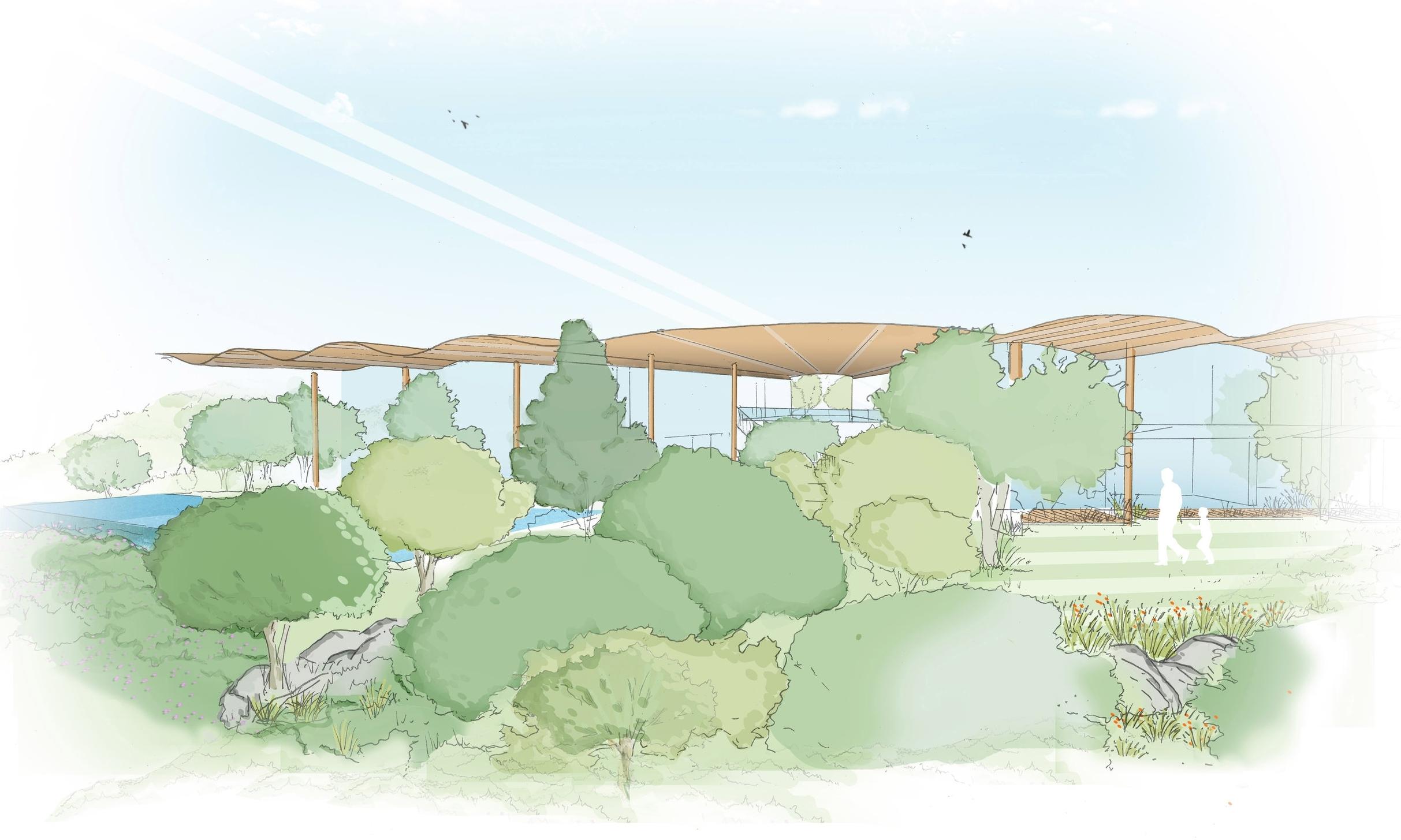 Central Landscape Sketch.jpg