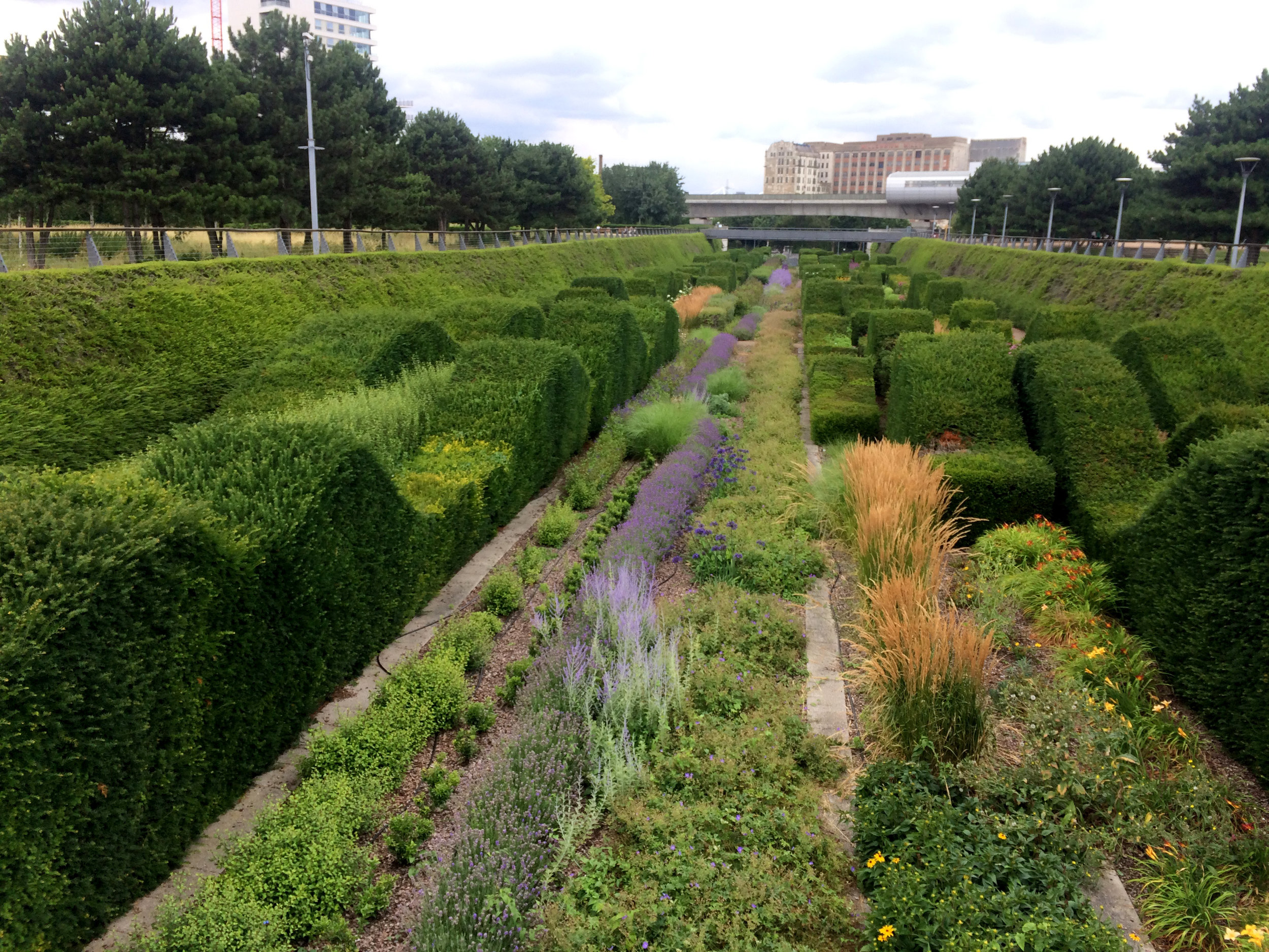The planting flourishes at the Thames Barrier Park