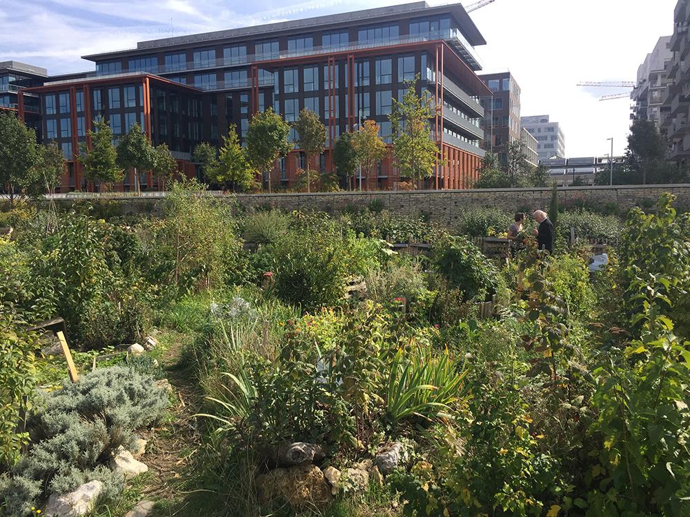 Grand Parc Saint-Ouen – Park of the Docks