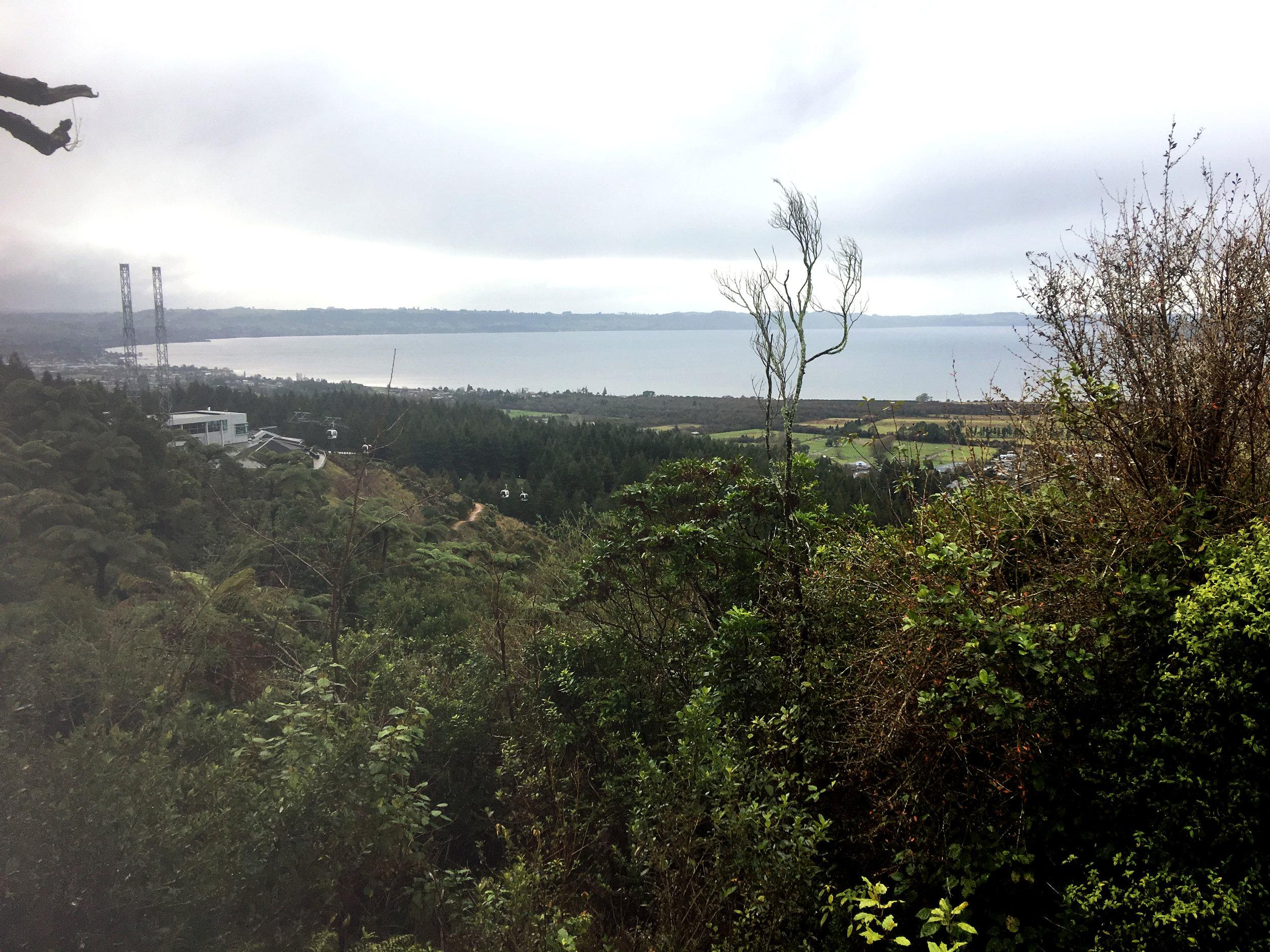 Views of Lake Rotorua from top of Ngongotahā Station