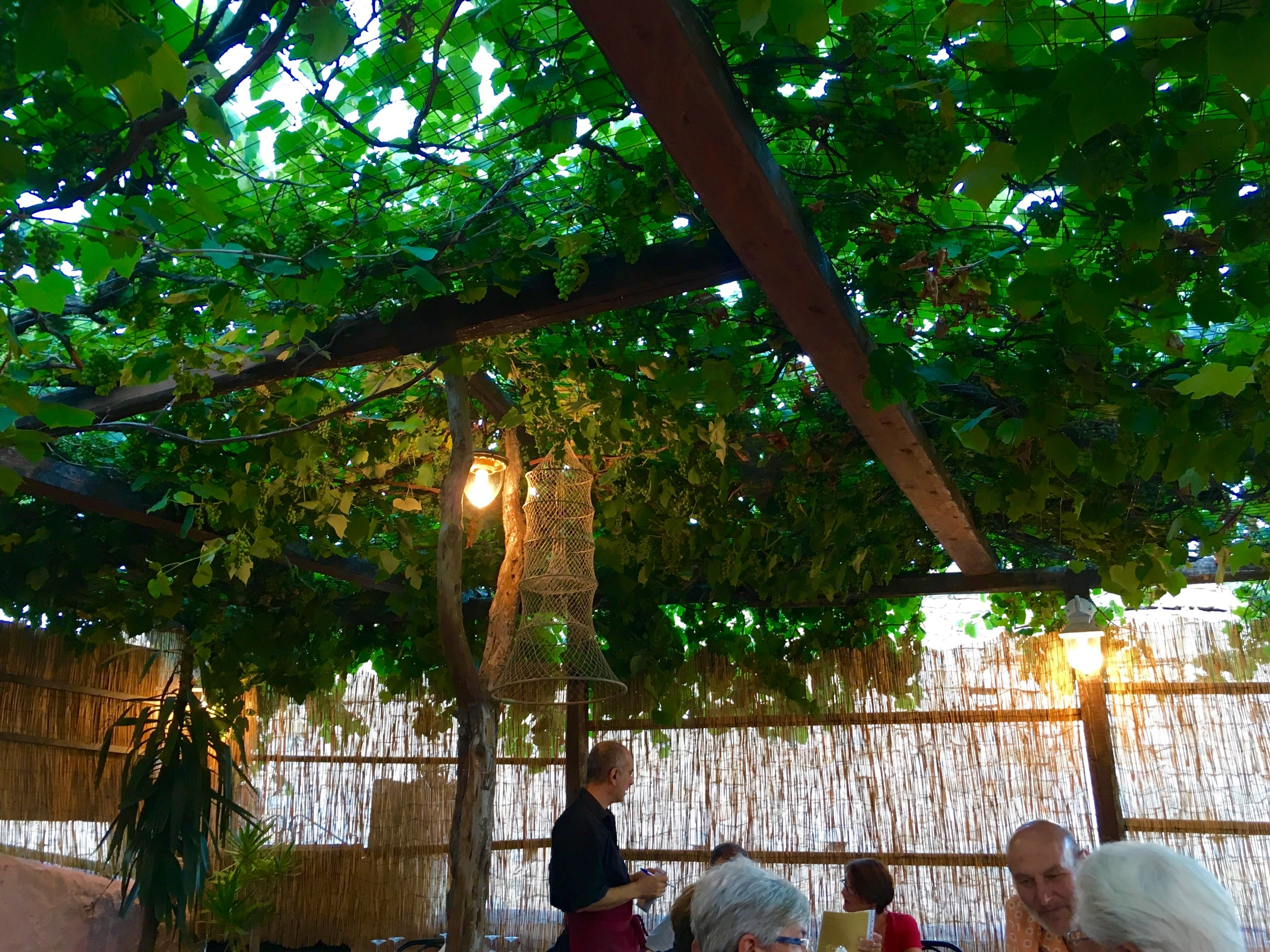 Dinner at Osteria da Zione
