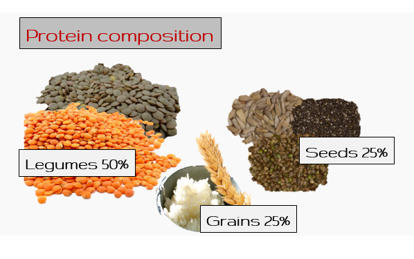 protein composition.png