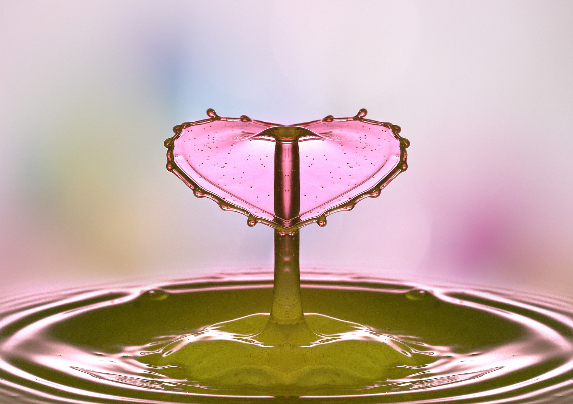 drop-of-water-2195585_1920.jpg