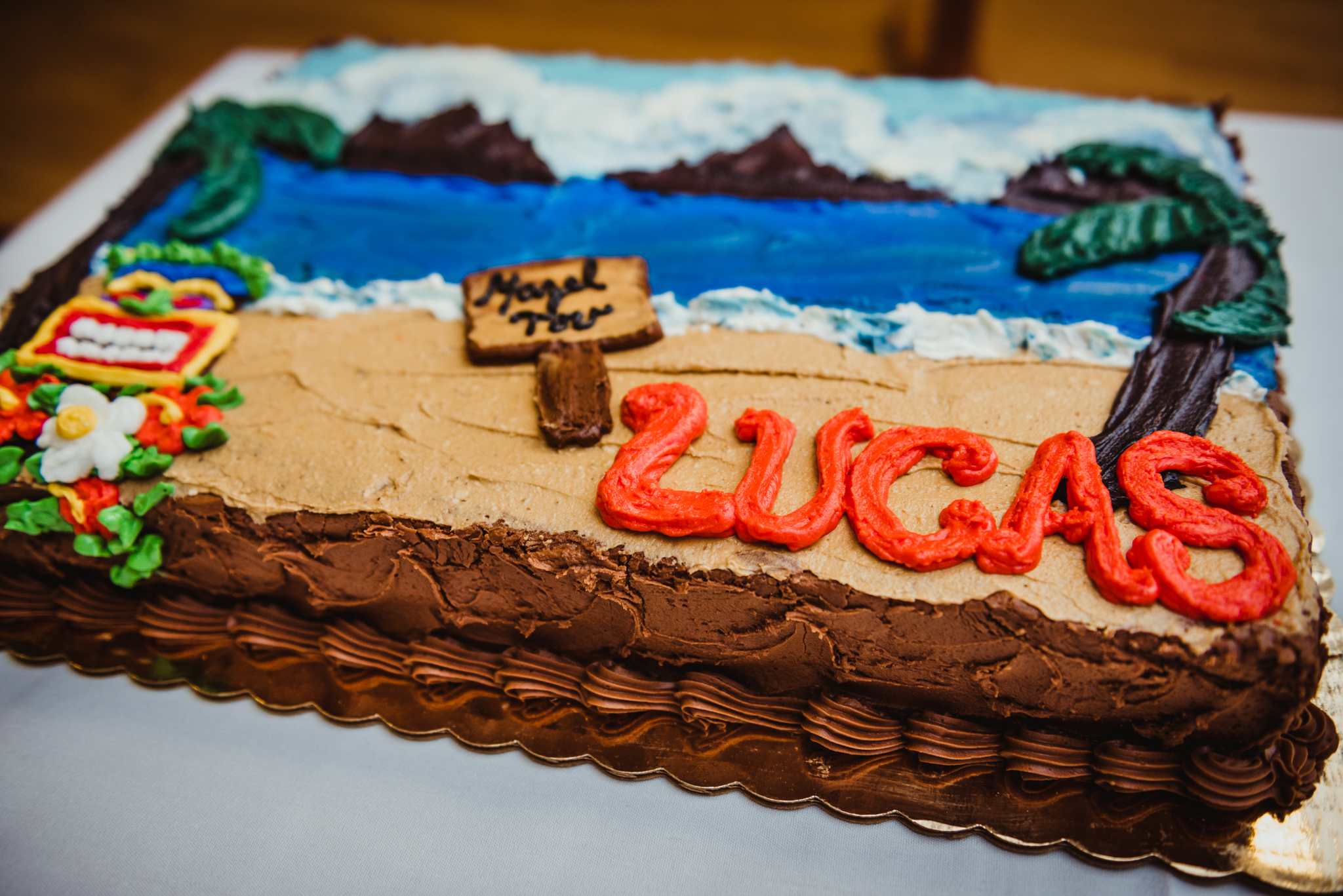 a-gorgeous-luau-cake-made-for-the-mitzvah-celebration.jpg