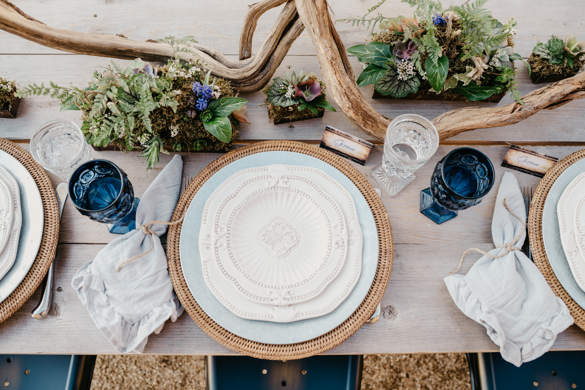 Succulents, blue glass ware, and driftwood adorn the table with the groom and groom place cards at the styled engagement session with Rose Trail Images at Windy Hill Farm near Raleigh, NC.