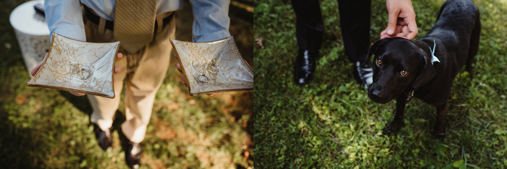 The wedding rings were engraved and held by their nephew before the wedding ceremony, and their puppy walked down the aisl in their backyard in Raleigh, NC, photos by Rose Trail Images.