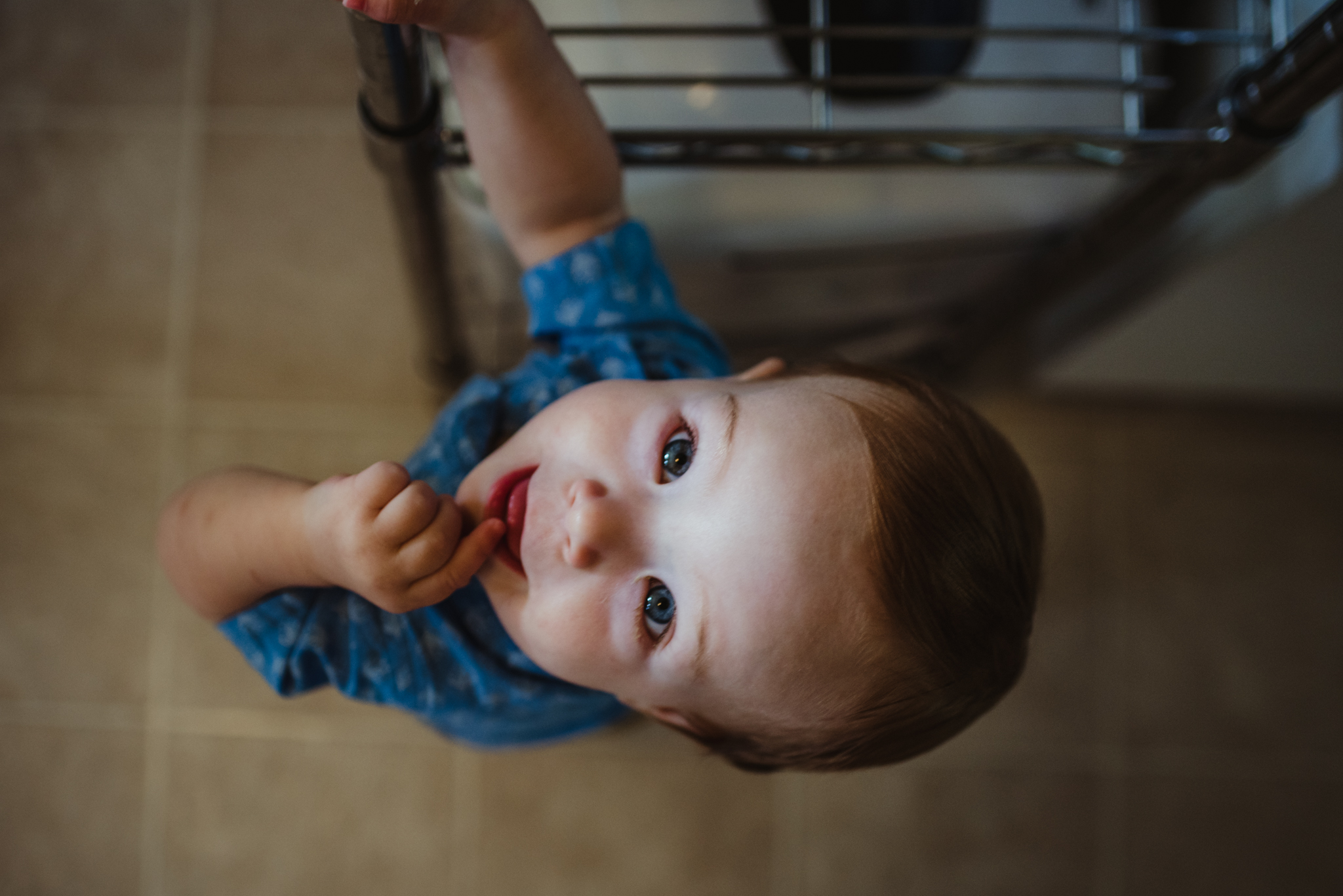 The baby wanders in the kitchen and looks up at the camera during their lifestyle session at home in Wake Forest with Rose Trail Images.