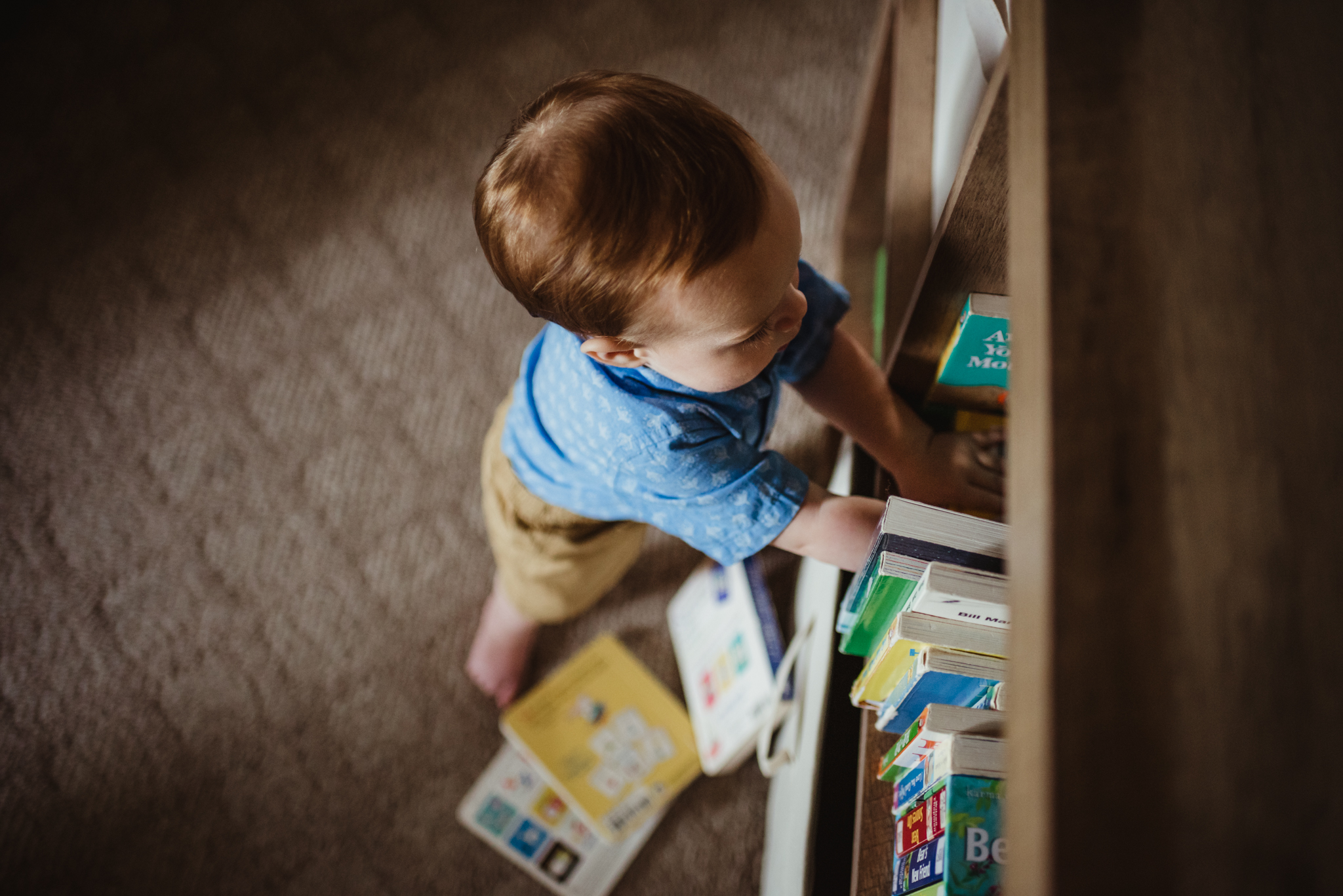 Baby stands at the book shelf knocking down books during their lifestyle session at home in Wake Forest with Rose Trail Images.