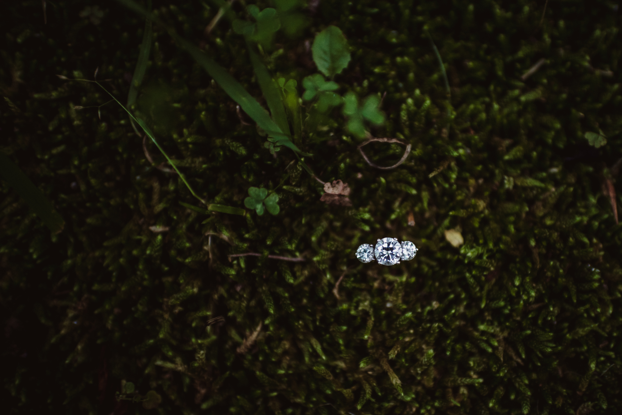 Kristin's engagement ring sparkled in the moss during her engagement shoot in Raleigh with Rose Trail Images.
