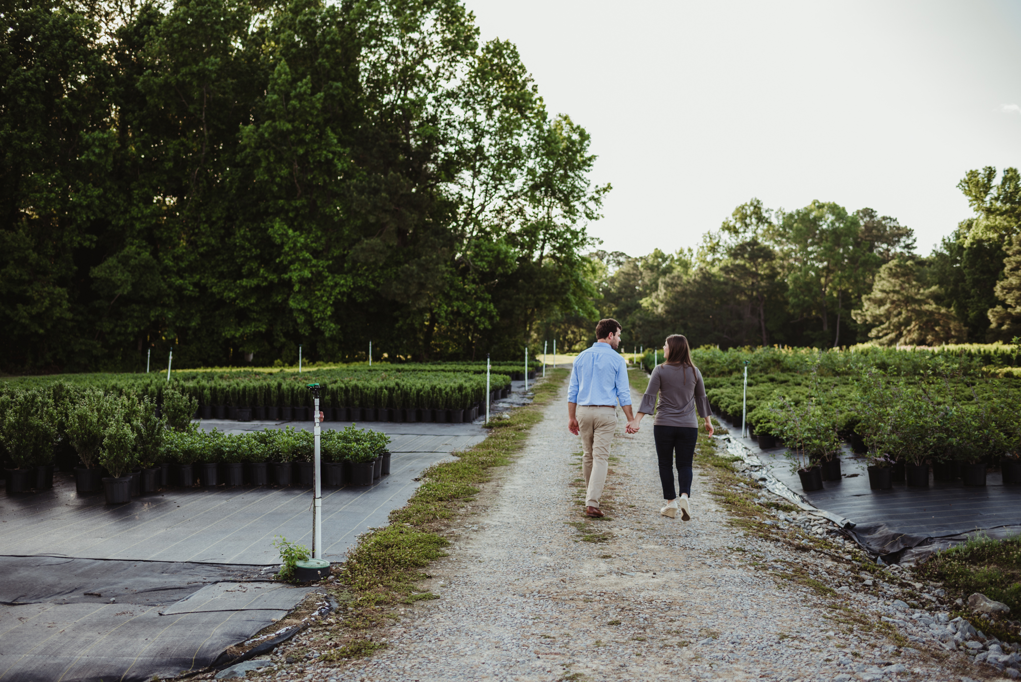 The bride and groom to be hold hands and walk down the dirt path together for their engagement pictures with Rose Trail Images at their family farm in Benson, North Carolina.
