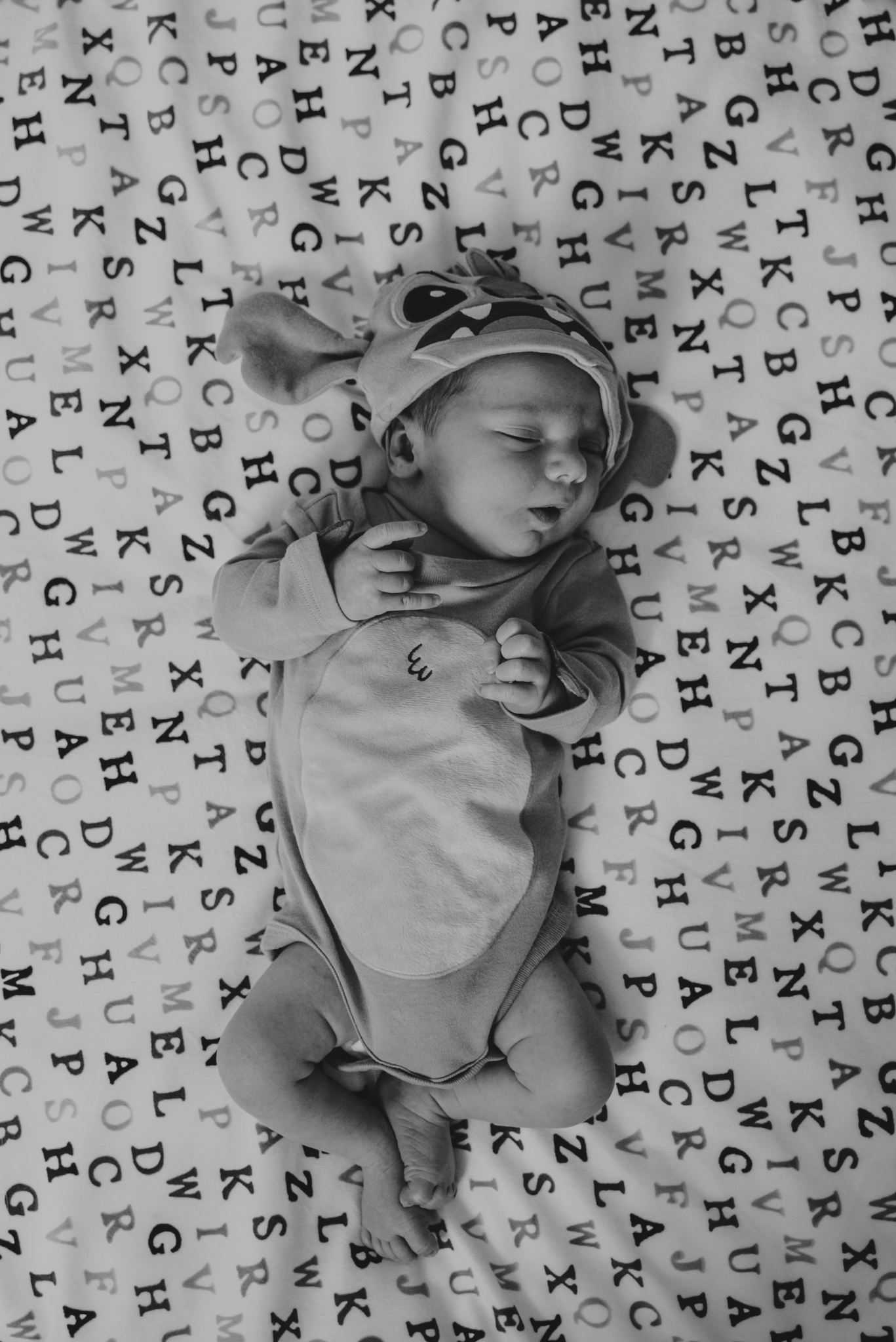 The newborn baby is dressed as the Disney character Stitch while in his nursery in Wake Forest, a black and white image by Rose Trail Images.
