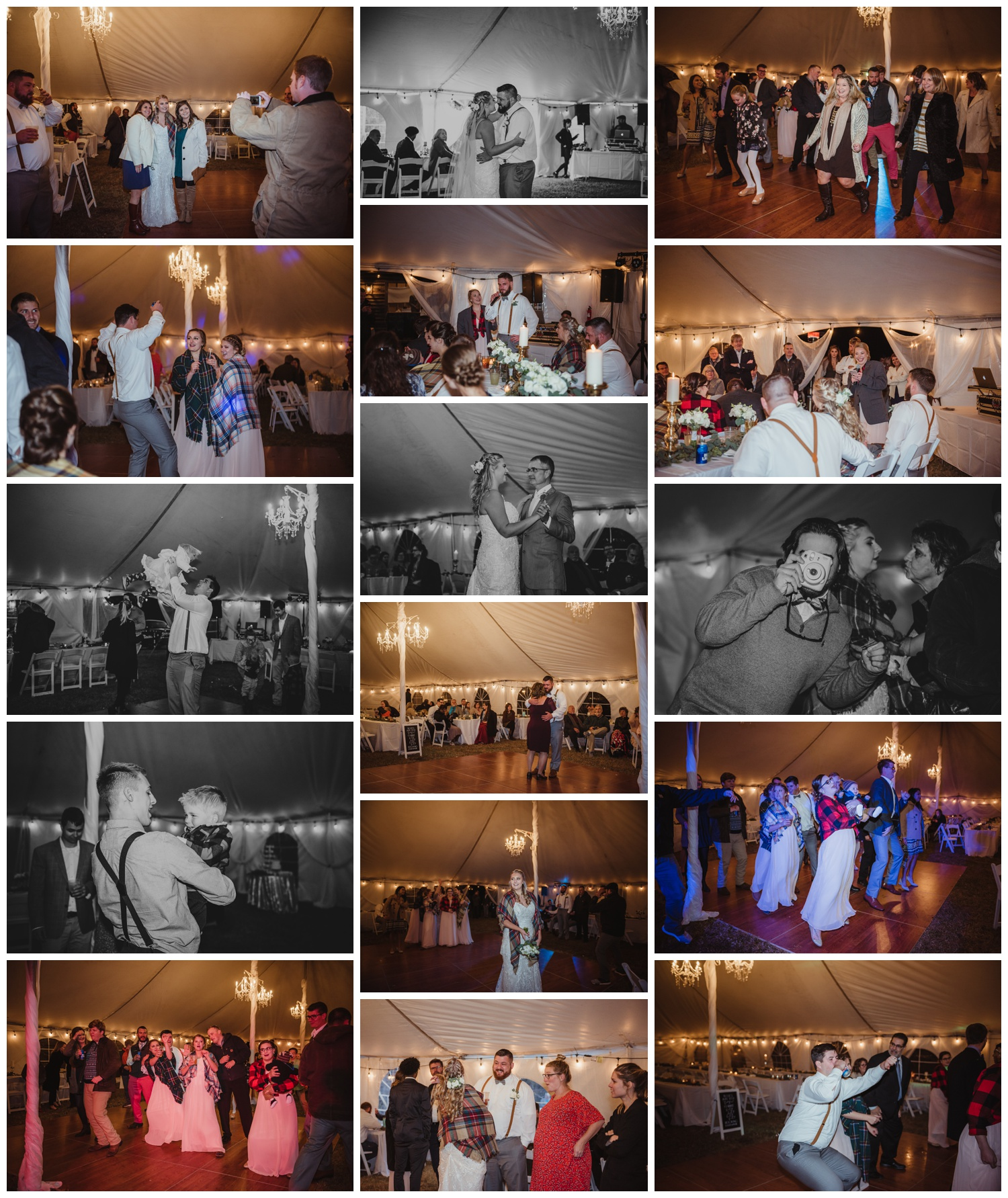 The wedding reception at The Warren Estate had all the guests dancing, images by Rose Trail Images of Rolesville, NC.