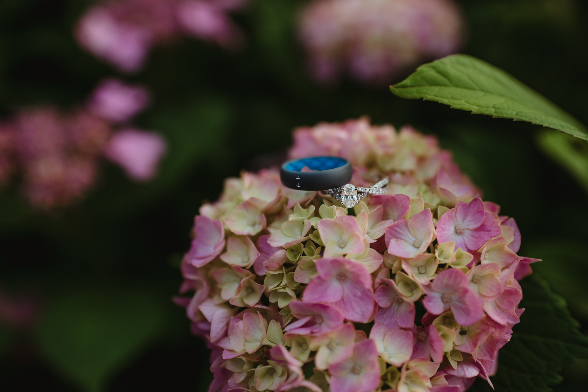 Raleigh-wedding-photographer-ring-shot-pink-hydrangeas-rose-trail-images.jpg