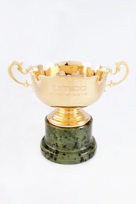 cheltenham gold cup photographer 1.jpg