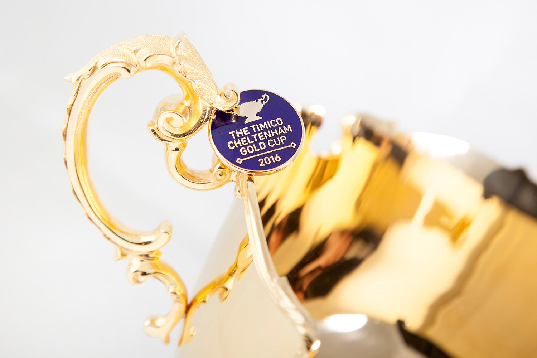 Cheltenham gold cup.jpg