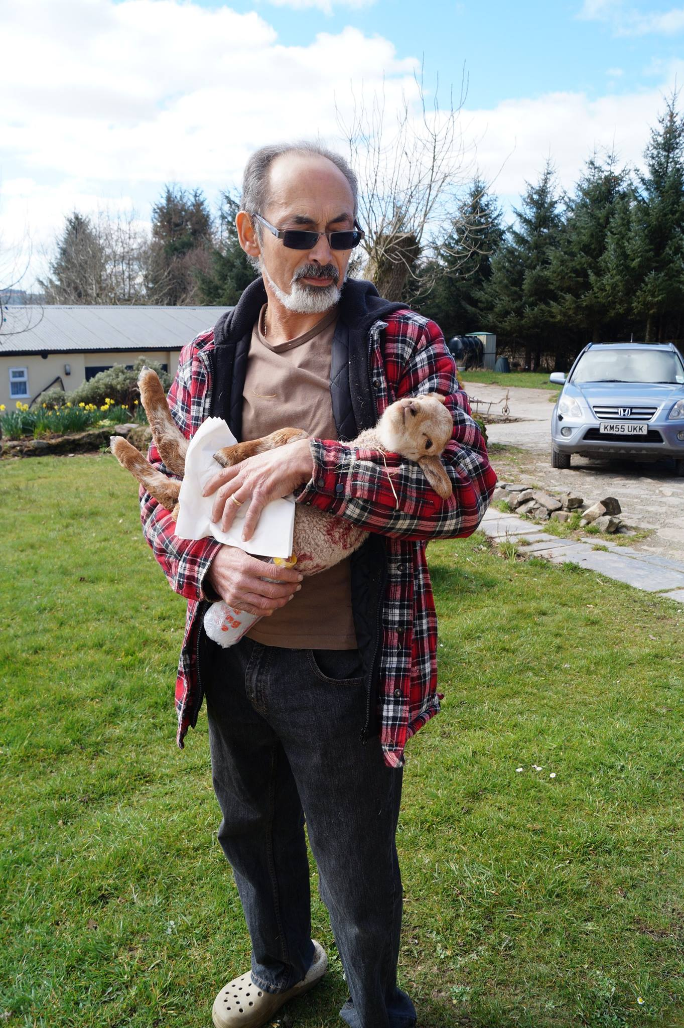 Pepe known also as Joe recently retired from the NHS as a Senior Rehabilitation Engineer.      At grass roots level he was very much involved with the day to day management of adapting wheelchairs to suit the developing needs of patients and inventing new ways to enhance the lives involved.  Trained also as a Hypnotherapist he enjoys assisting individuals to transform their lives.      Joe's many passions include Hypnotherapy, Red squirrel conservation, movies, Thai Chi and taking great care of his tortoises. He is currently taking steps to become an approved a tortoise specialist.    After 50 years of working and gaining huge amounts of skills, qualifications and experience Joe now applies all his gifts in the running of Ascension in the fields retreat and holiday let business. Joe loves taking the time to talk with guests and is often seen laughing in the fields with walkers, holiday makers and with his beloved lambs.    However Joe loves to work outside and at present is learning the skills of land management and rearing his new sheep, the 4 Dames.  Judi, Maggie, Helen and Elizabeth.      He is very much a hands on person and will often been seen applying his many skills to the continual development of our beautiful home and business. Joes work experience in Management, Engineering, Mechanics and Electronics to name just a few of his talents, comes in handy in dealing with the joys and tribulations of looking after such a venture as this.    Joe has deep insights into   humanity and takes his role as a Hypnotherapist very seriously. Given the opportunity Joe will help you create powerful change through his Hypnotherapy sessions.