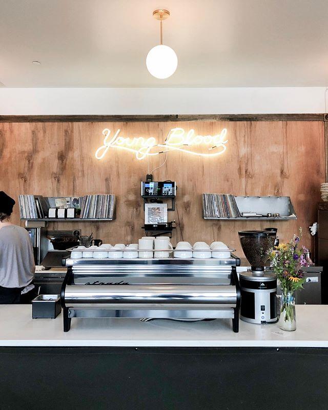 Brown sugar oat milk latte— my new favorite combo. A gem of a coffee shop in Fargo.