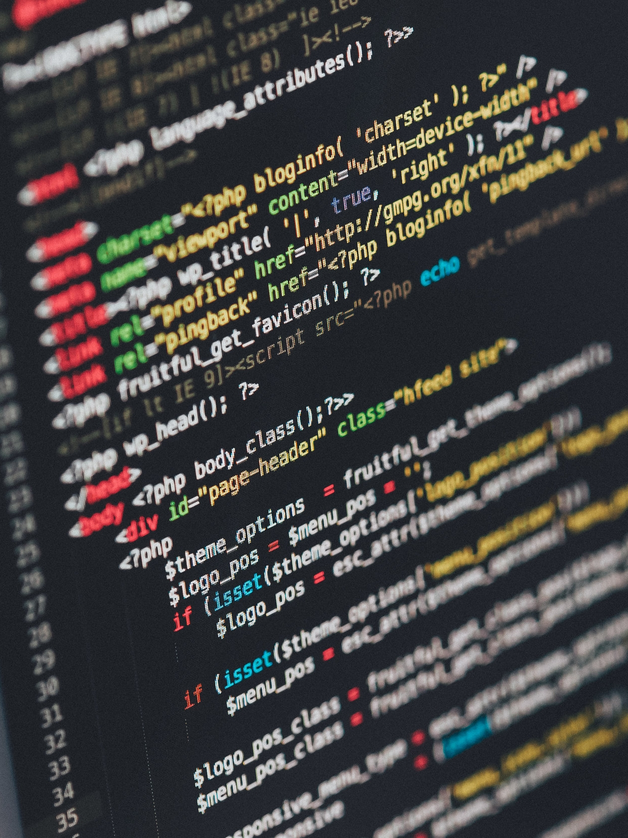 pexels_coding.jpeg
