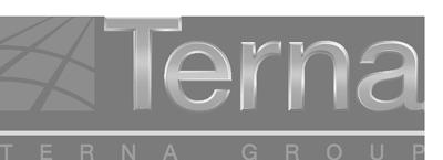 cliente-terna.png