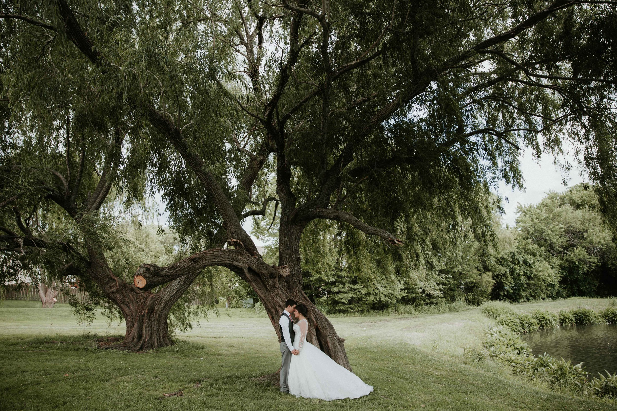 Northwest Arkansas Destination Wedding Photographer-1-4.jpg