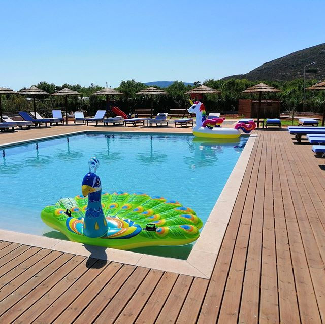 what is a #peacock and a #unicorn doing in the @doublebay.elafonisos #pool? Τι κάνει ένα παγώνι κι ένας μονόκερος στην πισίνα του @doublebay.elafonisos;