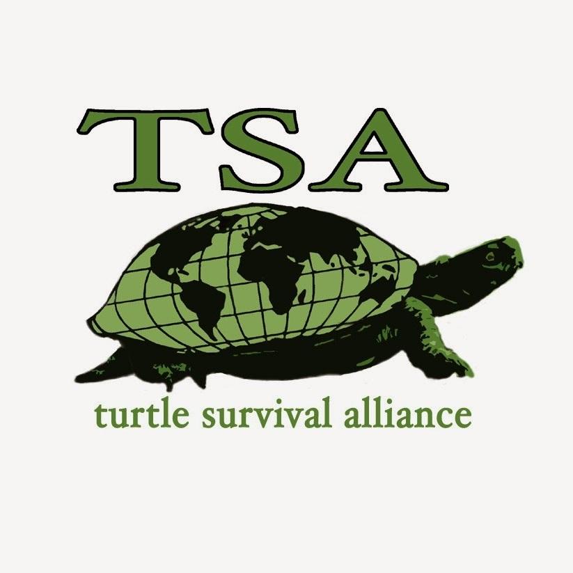 Turtle Survival Alliance -