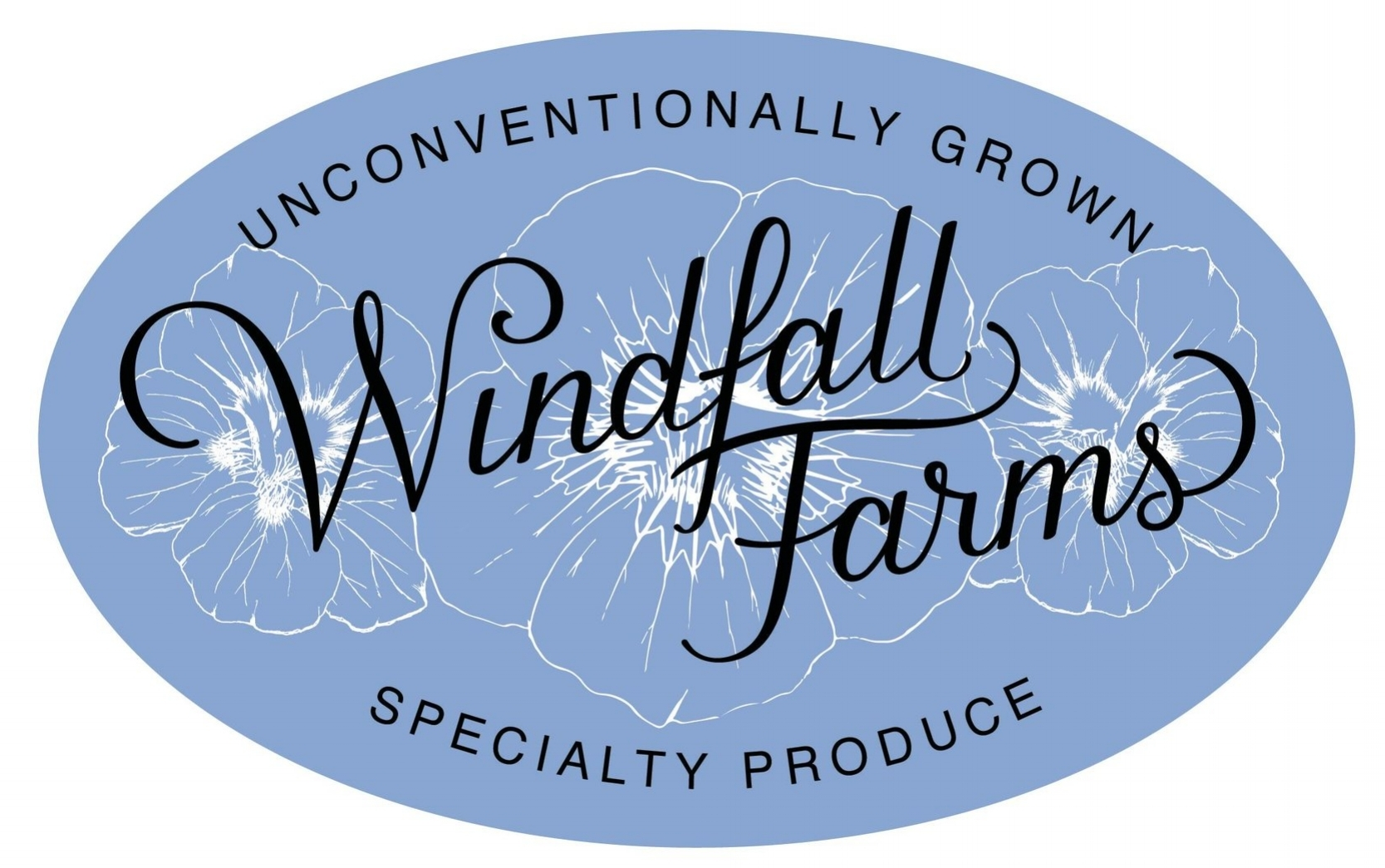 Windfall_Logo_final-page-001.jpg