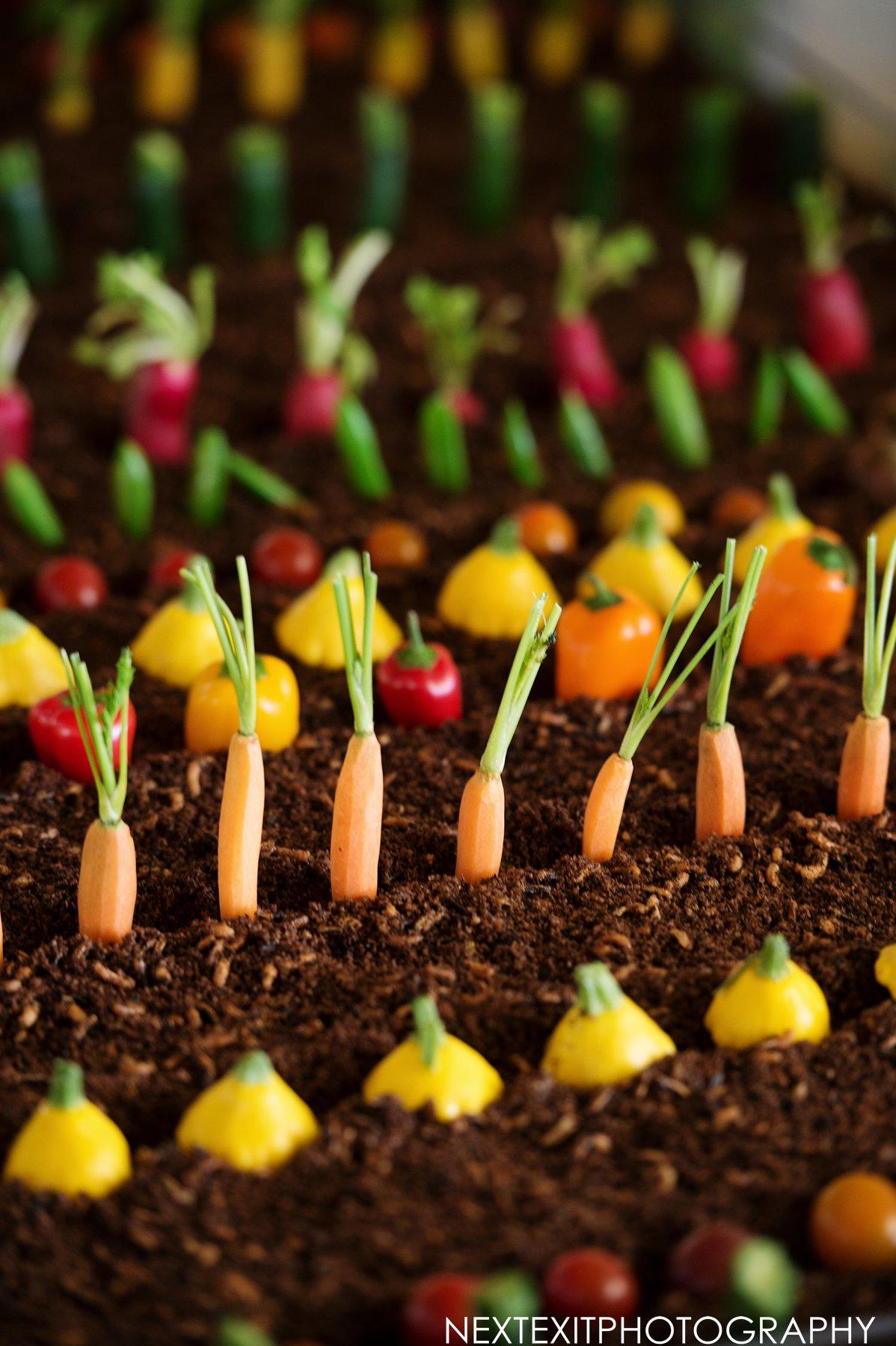 Edible Crudites Garden
