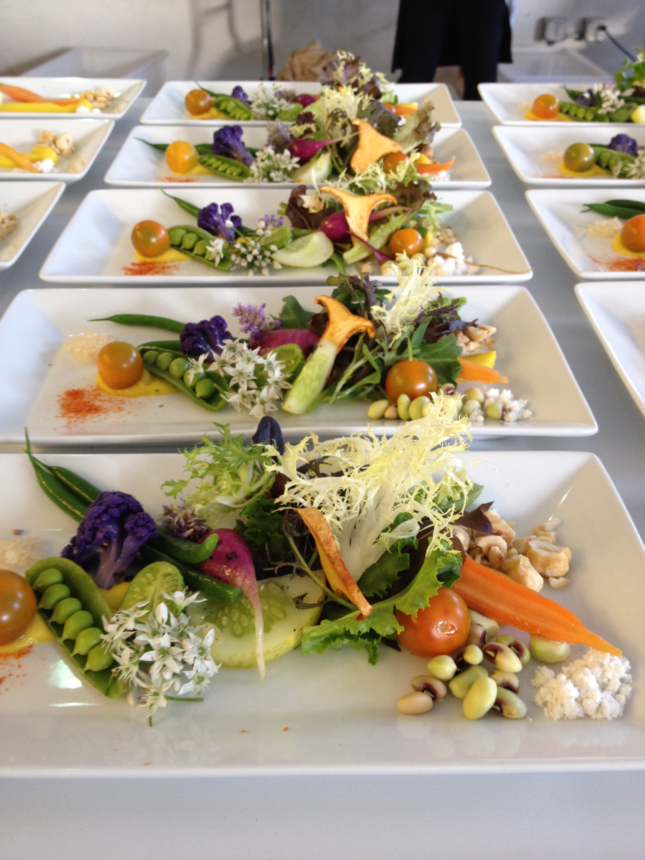 Plated Spring Salad