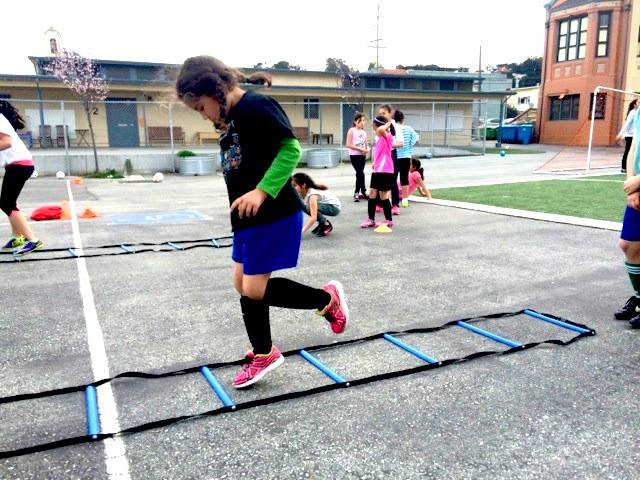 Winter Clinics all ages agility training