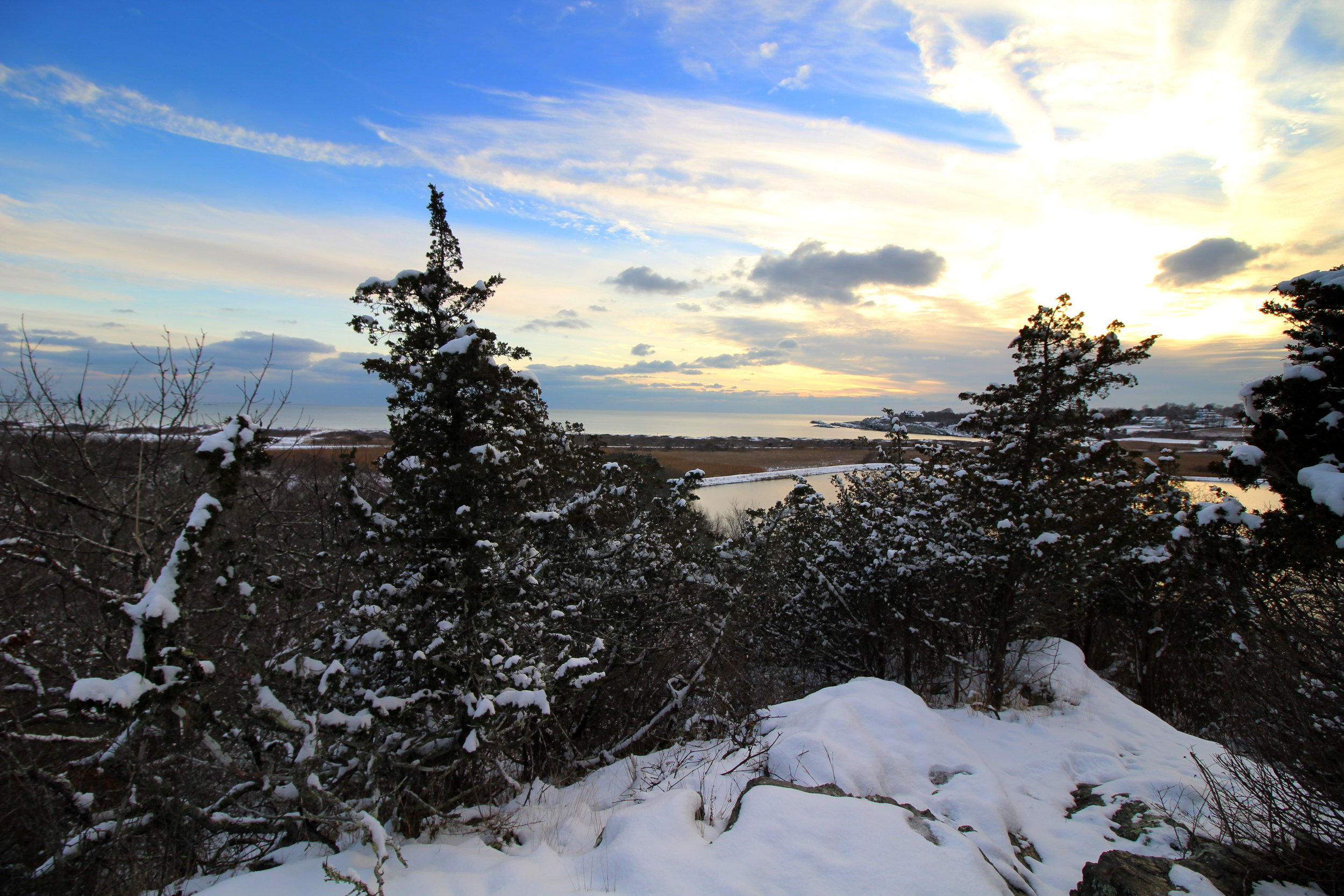 1-6-17 red fox overlook snow.JPG