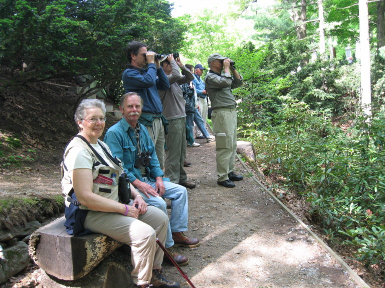 Spring Migration Ecotour