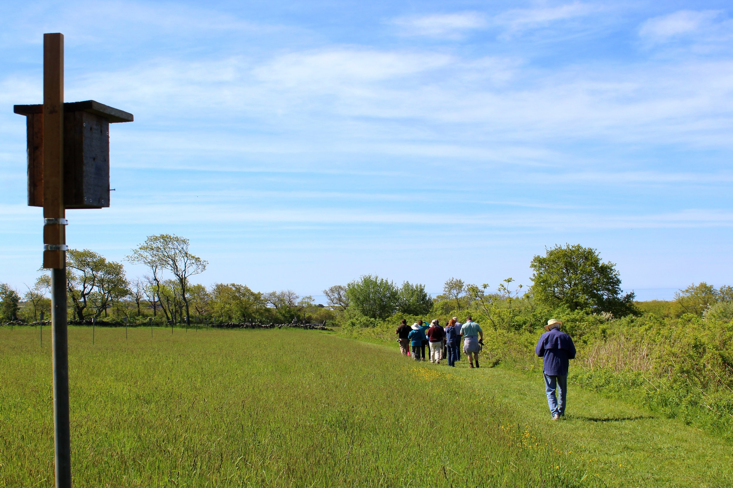 5-21-17 b&b bird walk.jpg