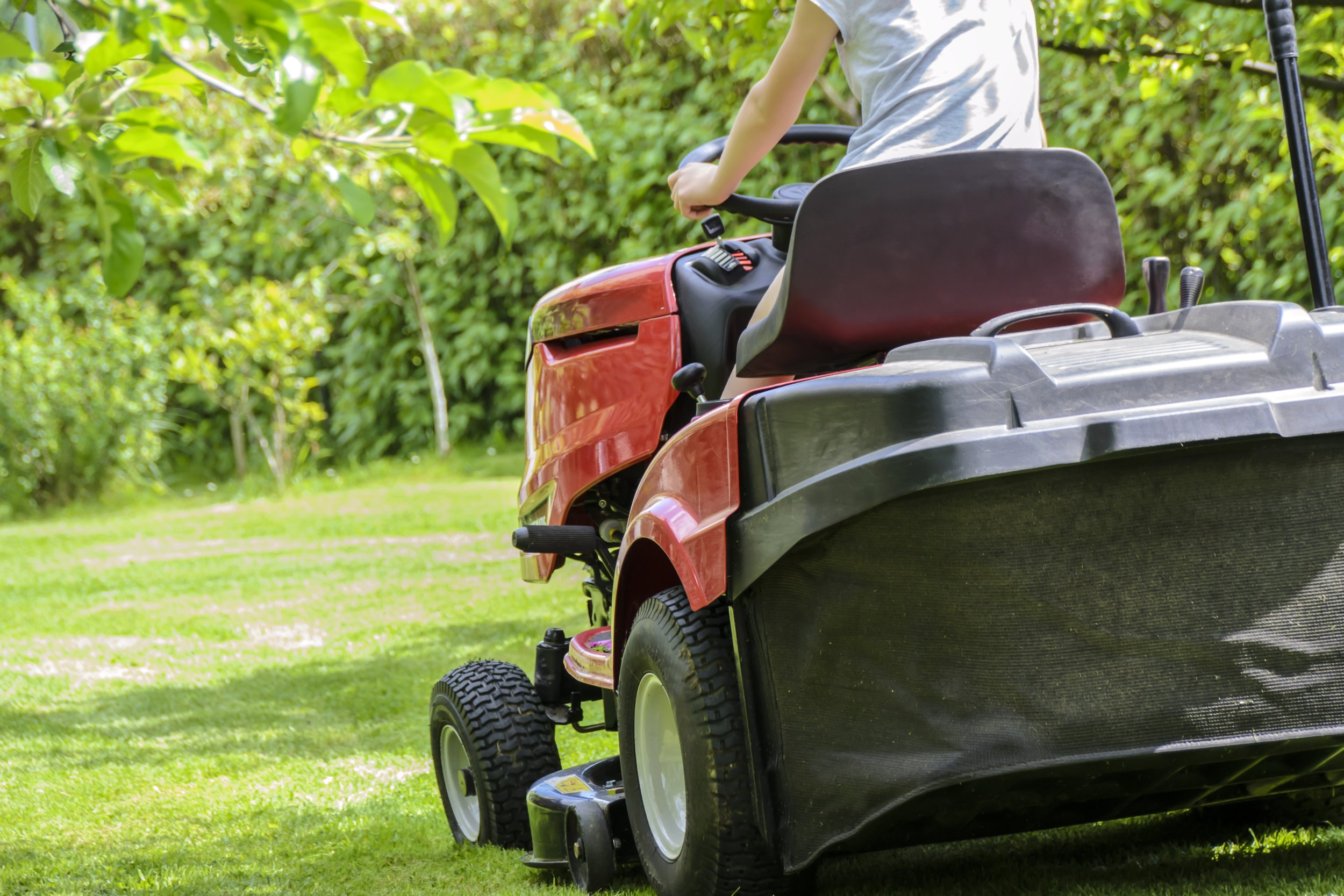 routine lawn care Renton Washington