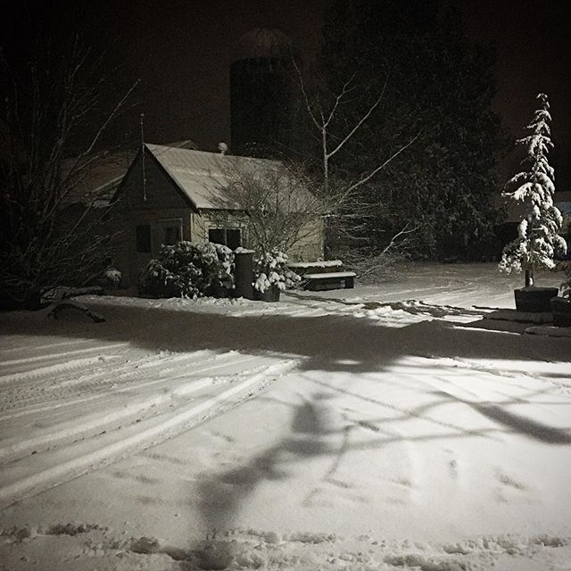 Tonight. #snow #night #pnw #farm #skagitvalley