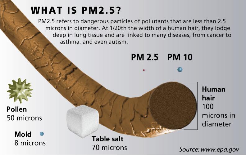pm2.5-air-particulate-matter.png