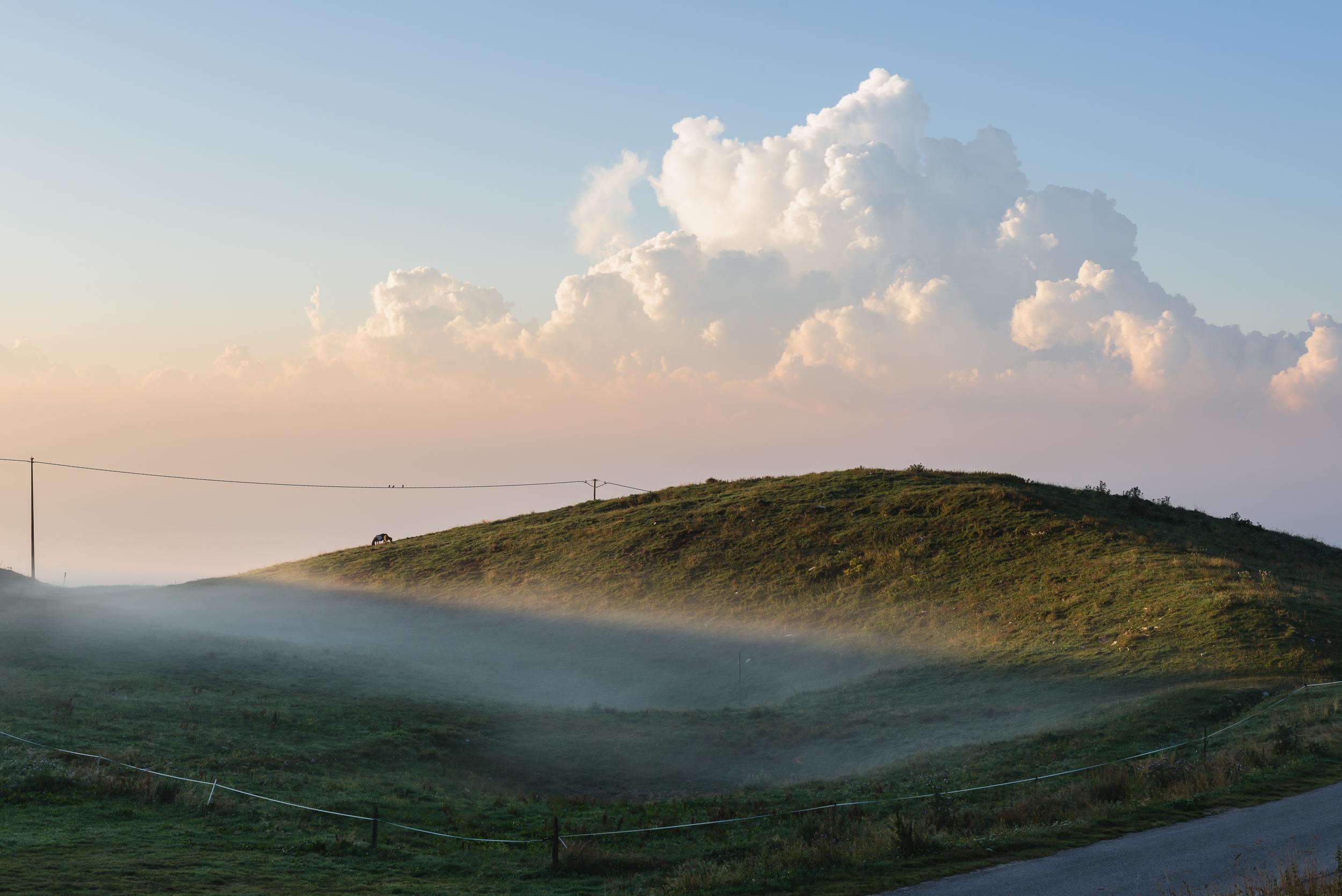 2018-08-11_Web_4916_Misty farm sunrise.jpg