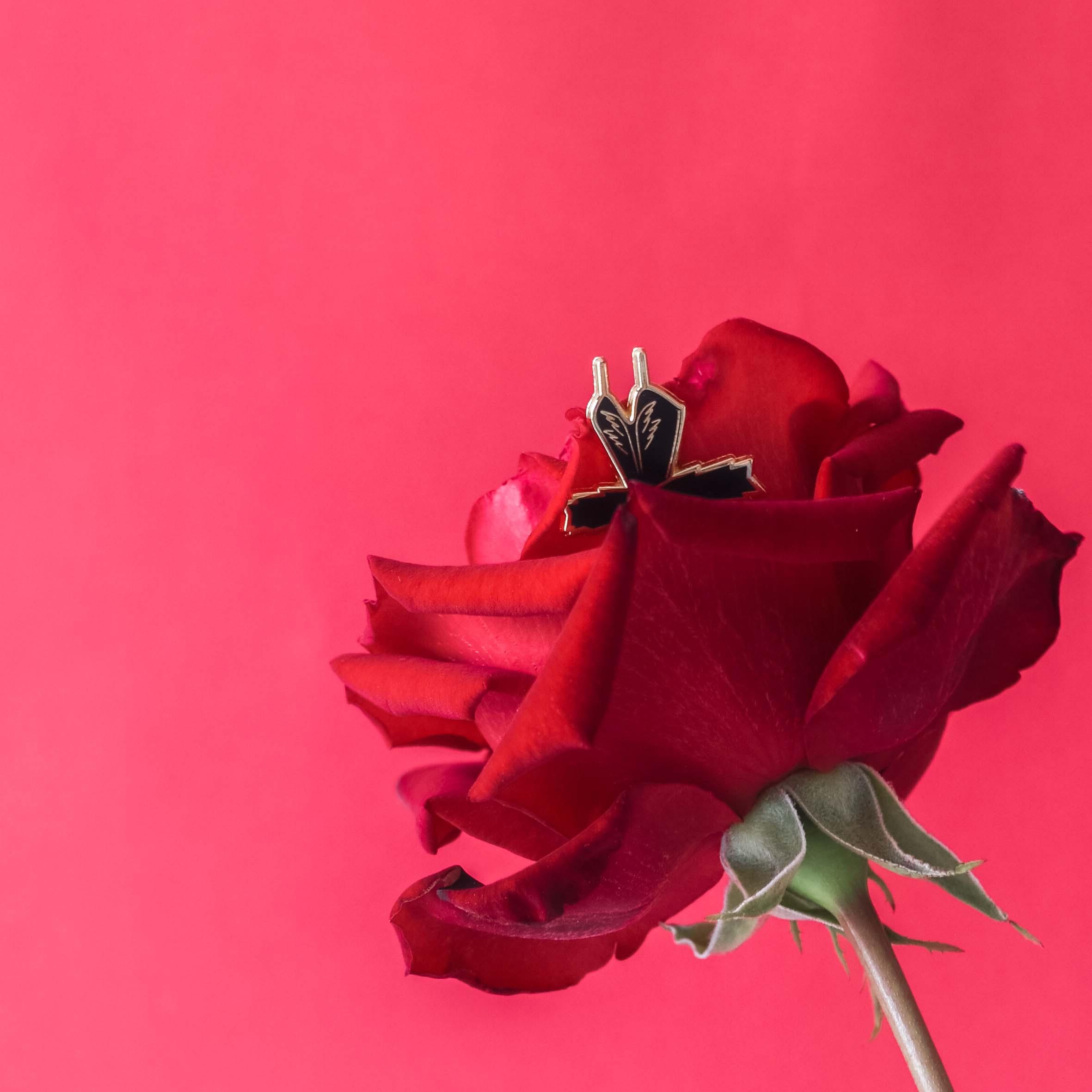 BB.rose.insta.1.jpg