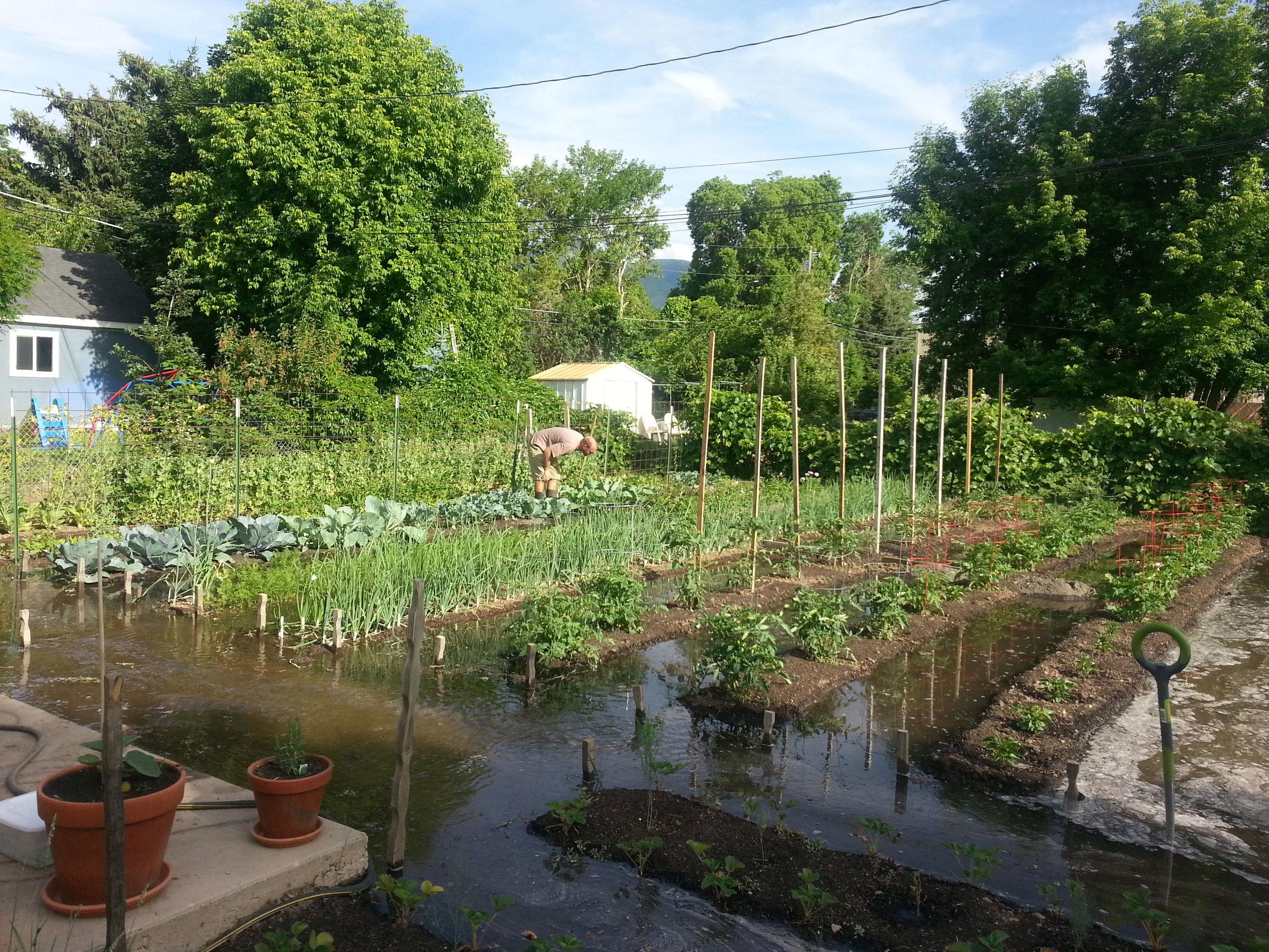 mark-crenshaw-garden-irrigation.jpg