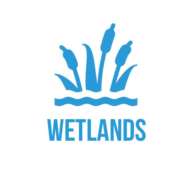 icon-wetlands-square.jpg