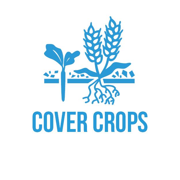 icon-covercrop-square.jpg