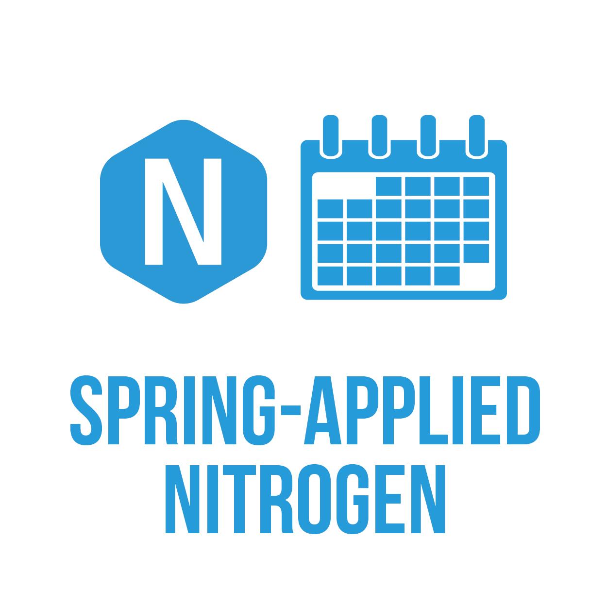 icon-springN-square.jpg