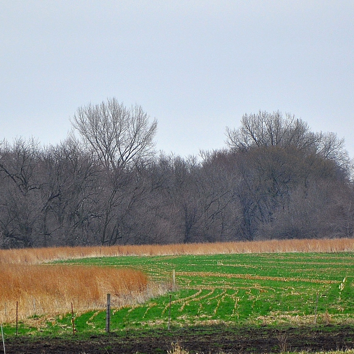 sw-iowa-terraces_sq.jpg