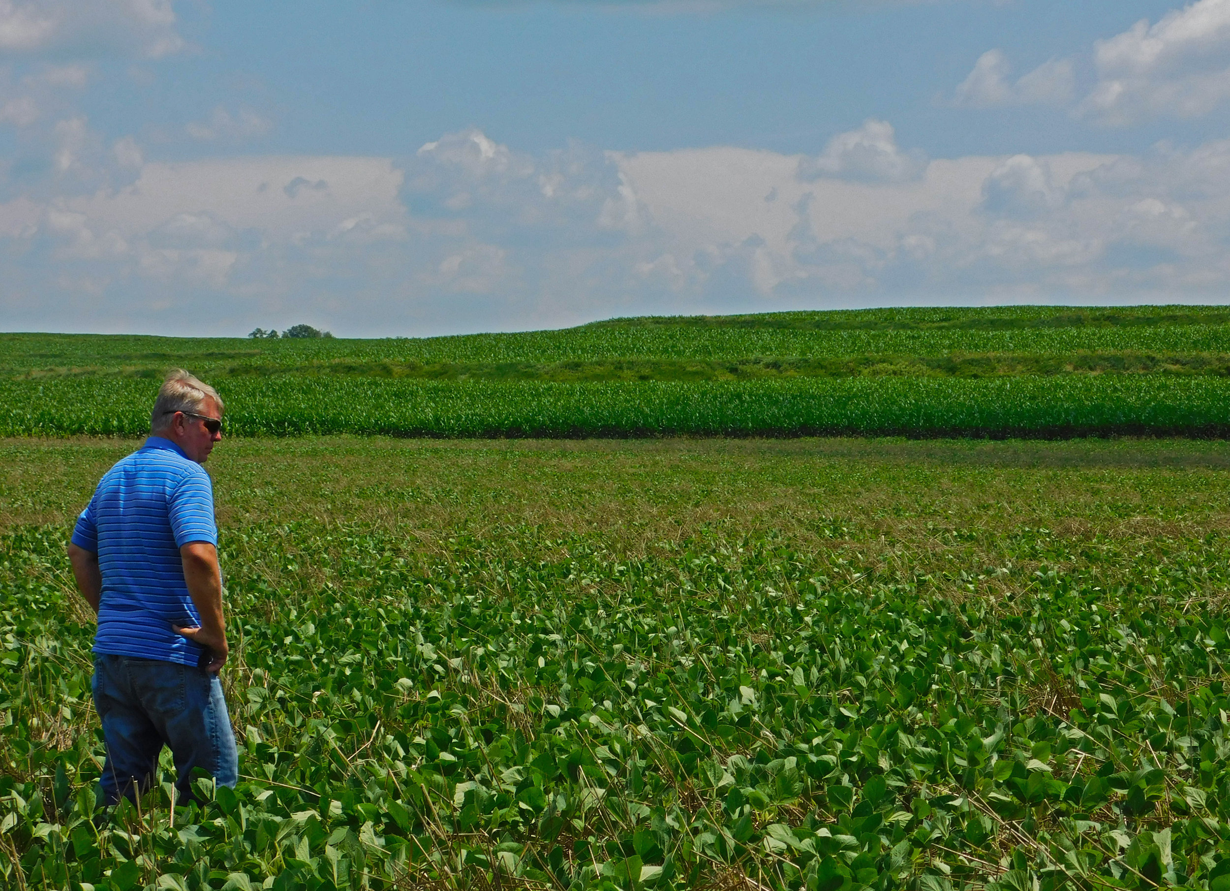 Johnson discusses his farming philosophy in his field near Red Oak, IA.