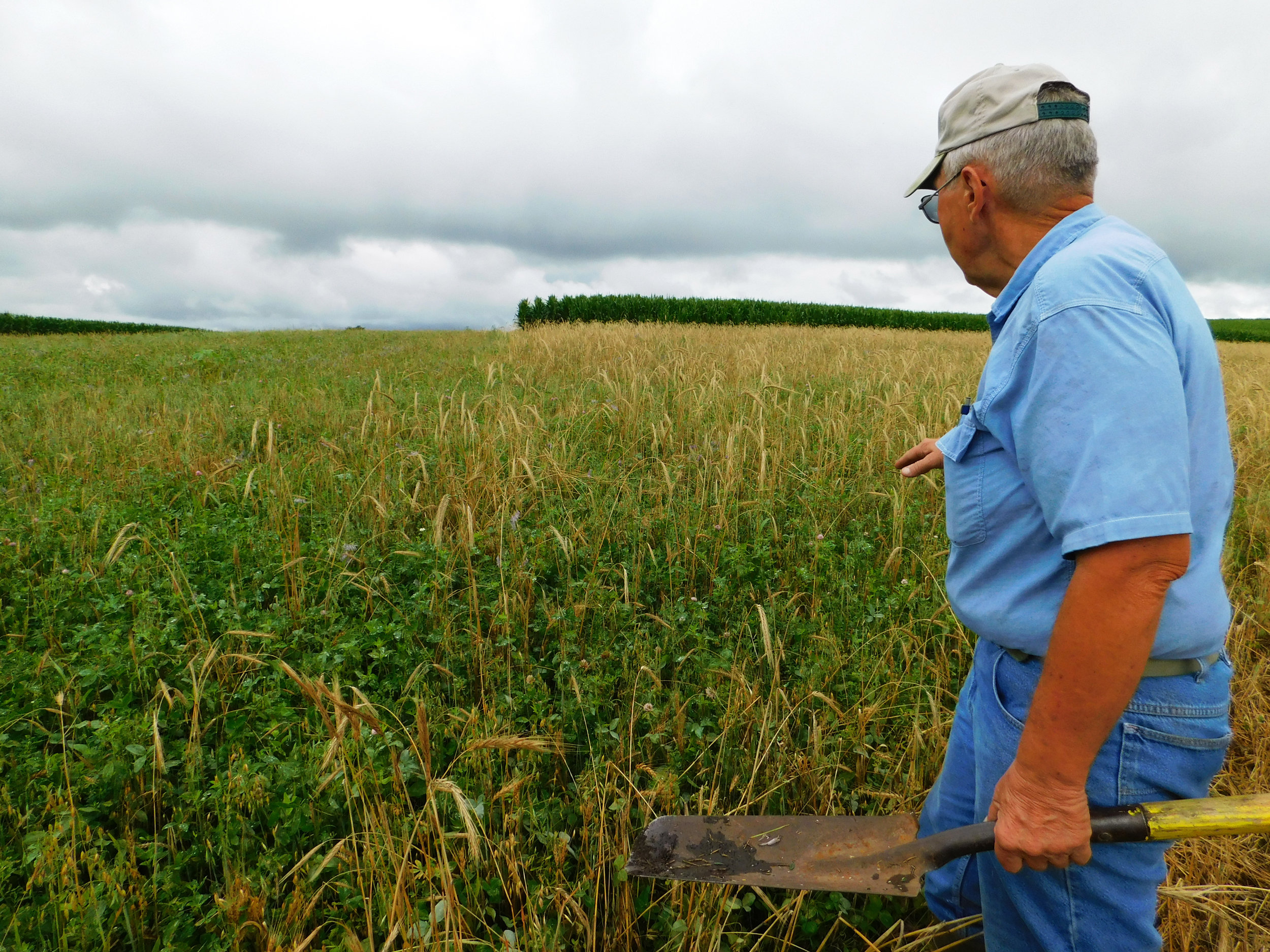 Ackley speaks about his mix of legumes and grasses that he plans to use for hay production.
