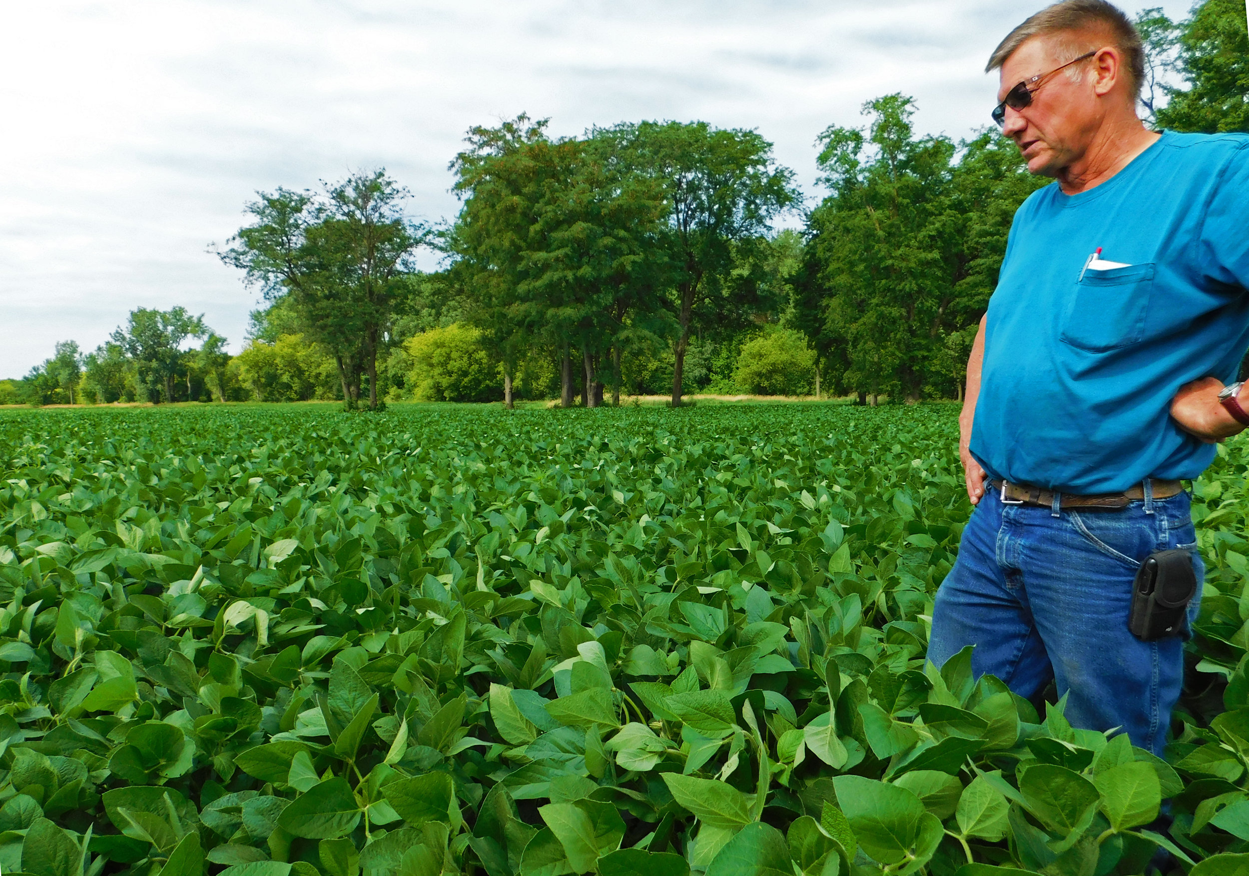 Black Hawk County farmer, Leonard Youngblut, talks about cover crops on his operation.