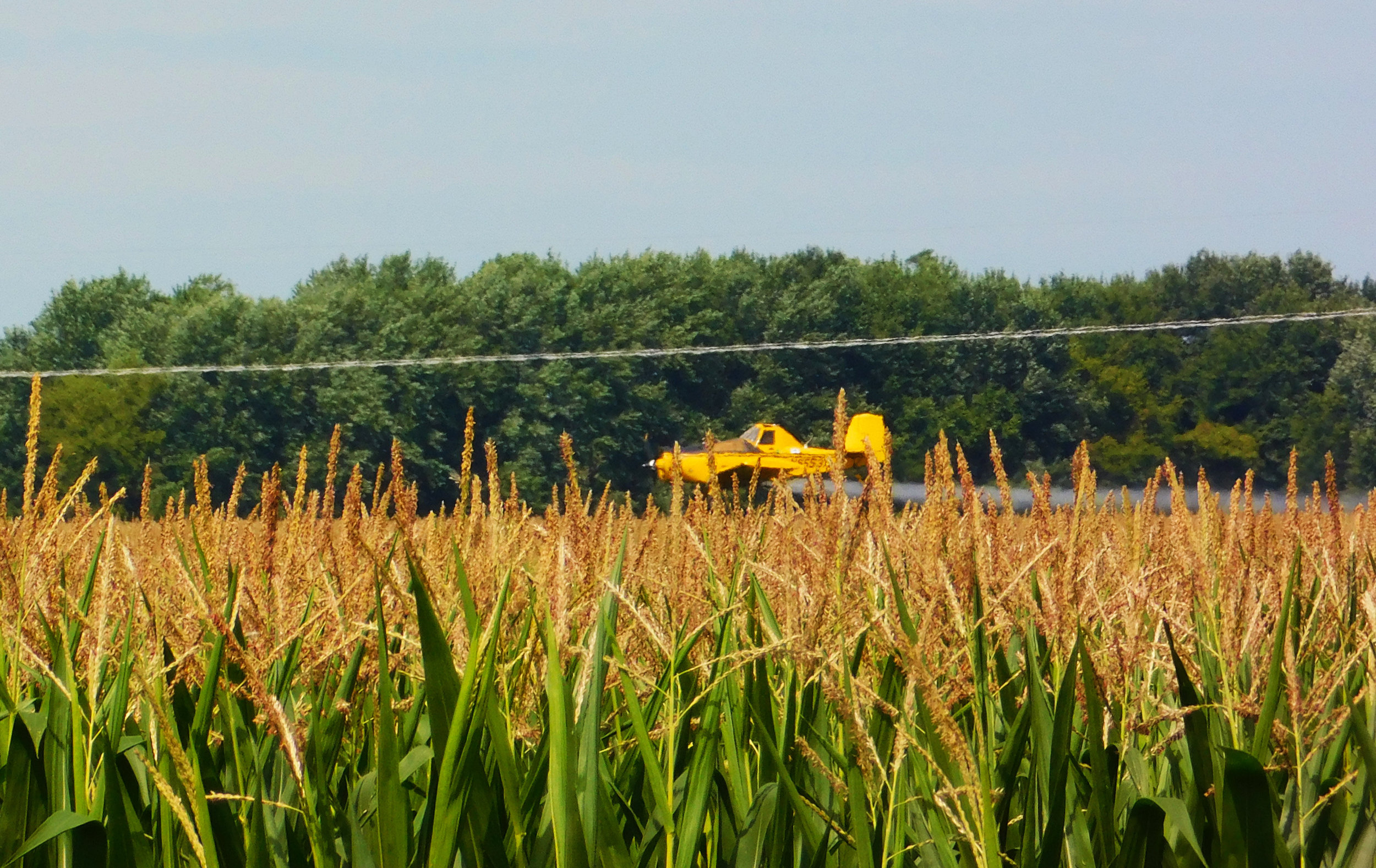 A crop duster sprays Youngblut's cornfield.