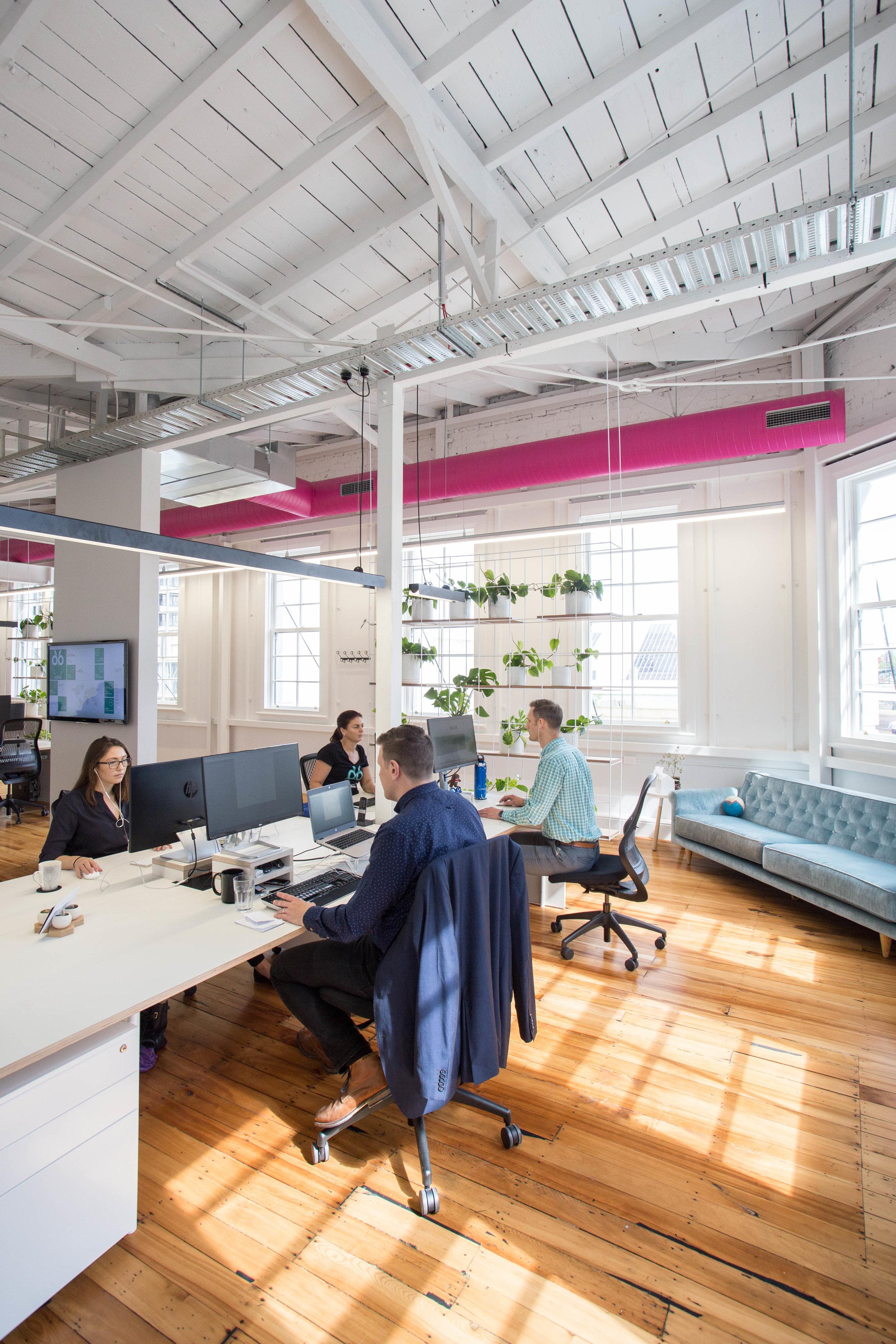 Commercial Interiors Dynamo6 - Designwell