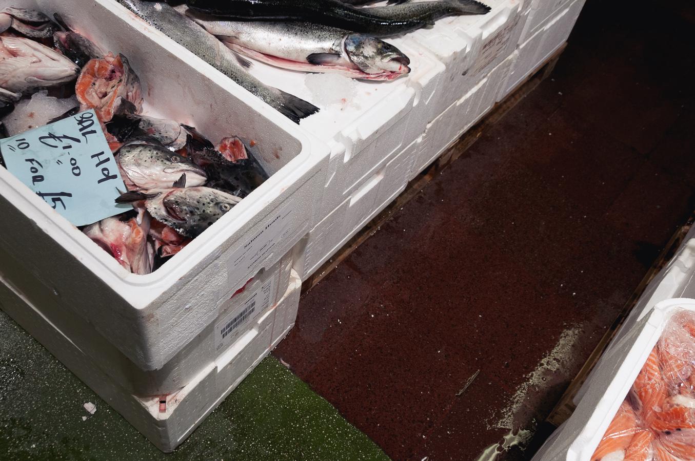 billings-gate-market-salmon-cut-offs.jpg