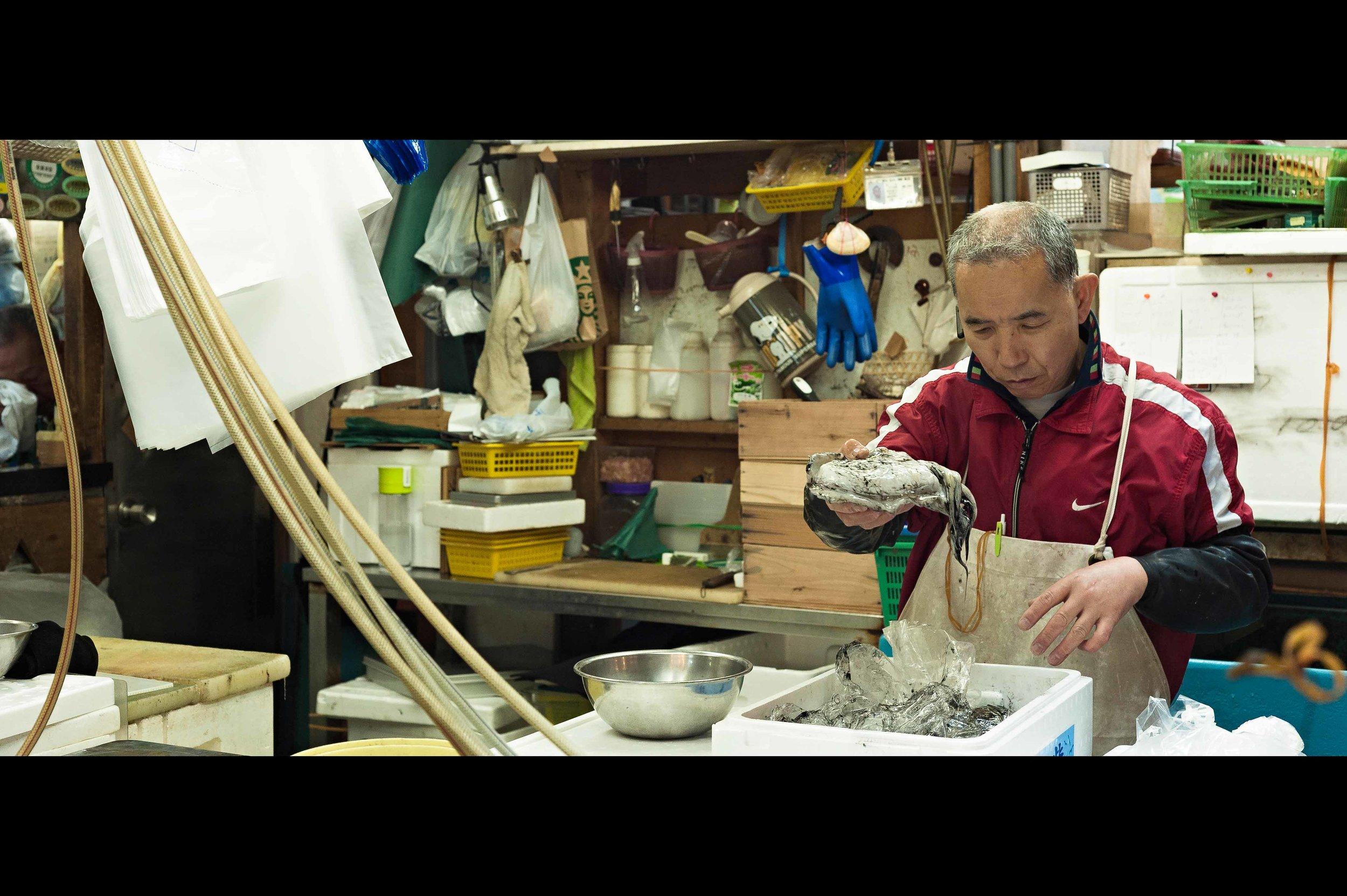 cuttlefish-fish-market-vendor-tsukiji copy.jpg